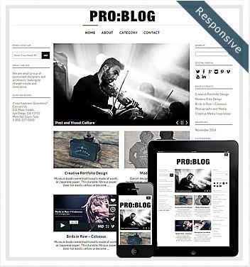 creative wordpress themes - pro-blog-theme-wordpress