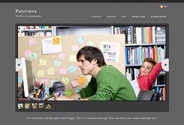professional wordpress themes - 9