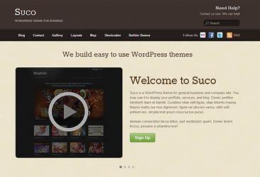 professional wordpress themes - 18