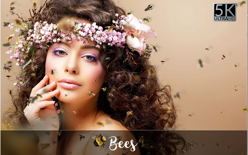 Magnificent Overlays - Bees
