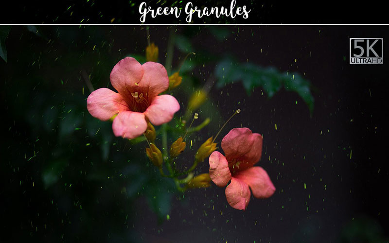 Magnificent Overlays - Green Granules