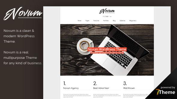 Novum WordPress Theme- Launch Your Website