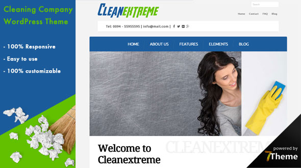 Cleanextreme WordPress Theme- Launch Your Website