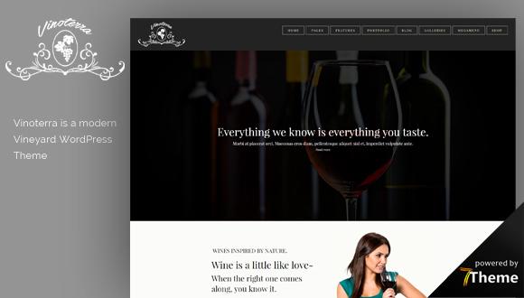 Vinottera WordPress Theme- Launch Your Website